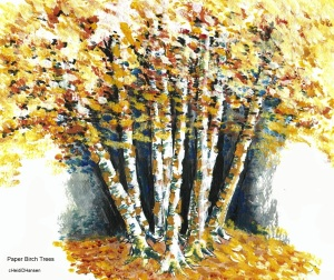 paperbirchtrees